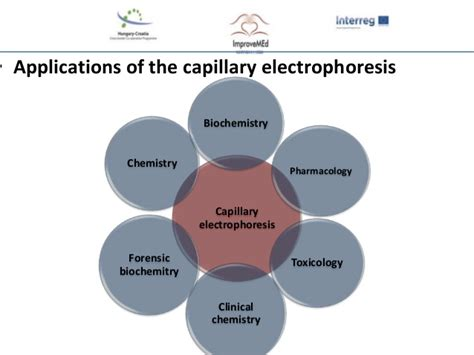 The principle and performance of capillary electrophoresis