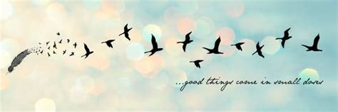 Good things come in small doses - Facebook Cover | Cobrir