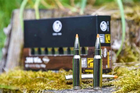 RWS Short Rifle: ammo for short-barreled rifles - all4shooters