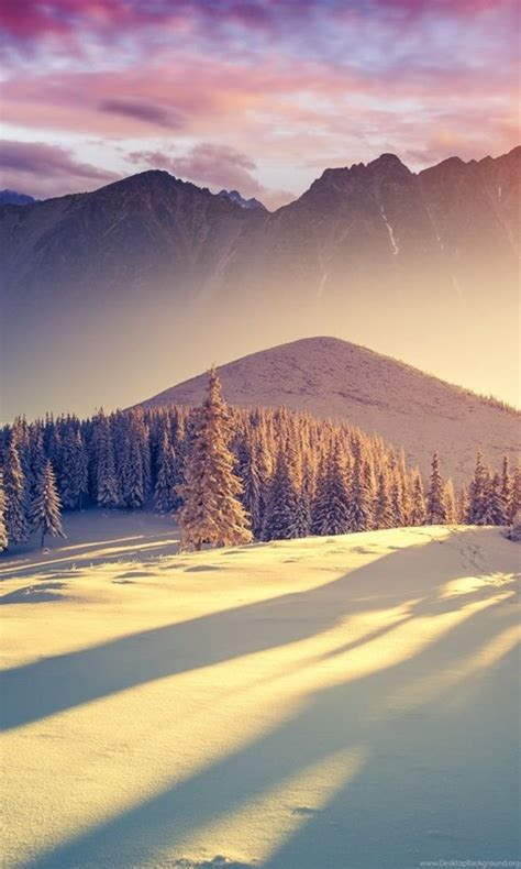 Nice And Beautiful Winter Wallpapers And Theme For Windows